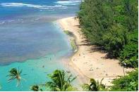 aloha-beach